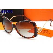 Hermes Sunglasses 18 RS14195